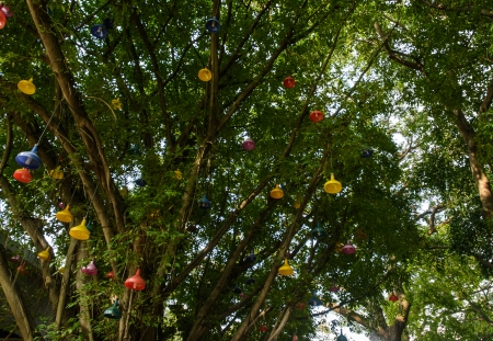laterns: many color laterns hang on high tall  trees natural Stock Photo
