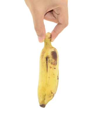 woman hand hold dirt Ripe banana isolated on white background photo