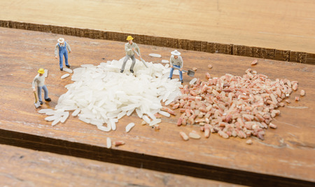 Miniature people worker man working about color rice seed photo