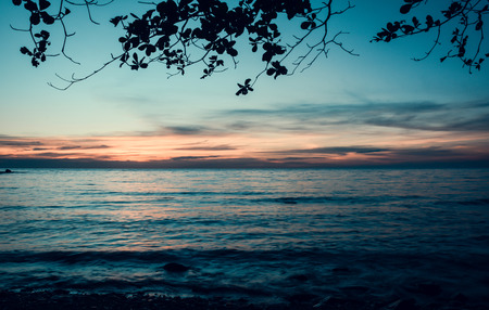 sea scape: sea scape summer and tree of koh chang Islands in Thailand with retro filter