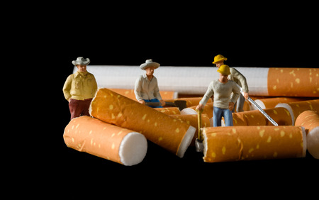 miniatures: lot of cigarette butt with miniatures workers isolated on black background Stock Photo