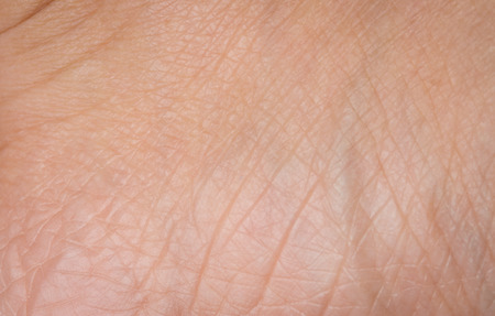 close up Human skin woman texture macro Imagens - 38673365