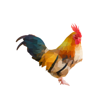 polygon triangle chicken (rooster) illustration. Low poly ( geometric ) hen animal isolate on backgrounds