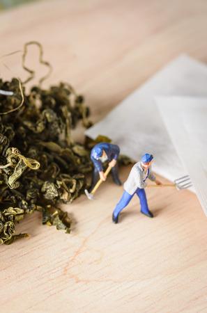 loose leaf: organic loose tea leaf with tea bag and miniature figure  people working on wood table