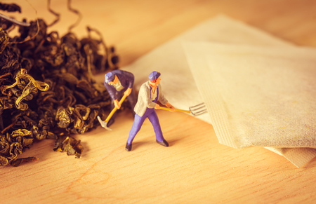 loose leaf: organic loose tea leaf and miniature figure  people working on wood table with retro filter Stock Photo