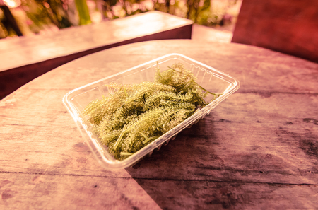 common sense: Sea grapes and Green caviar (Umi budo) on wood table with retro vintage filter