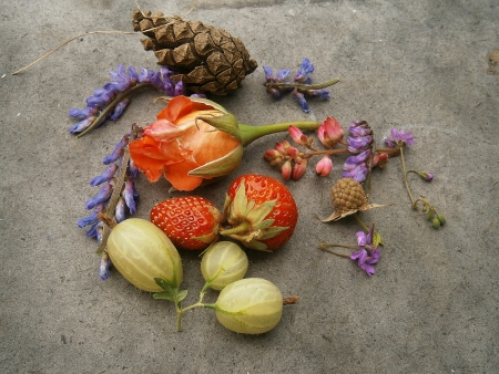 Rose with fruit decoration with pine cones, gooseberries and raspberries photo