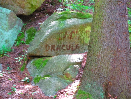 Dracula stone, haunted inscription on a stone in the forest photo
