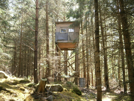 hunters tower: hunting tower