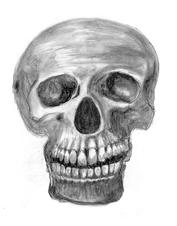 a skull sketch on paper photo