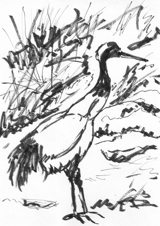chinese painting bird crane on paper photo