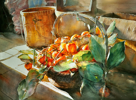 watercolor painting persimmon hand drawn , on paper Stock Photo