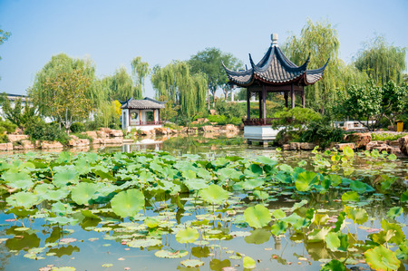 asian house plants: chinese garden in china south