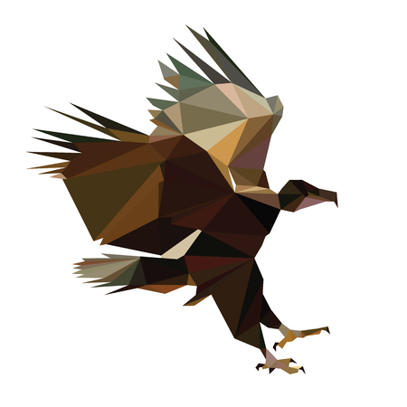 low poly bird design paint