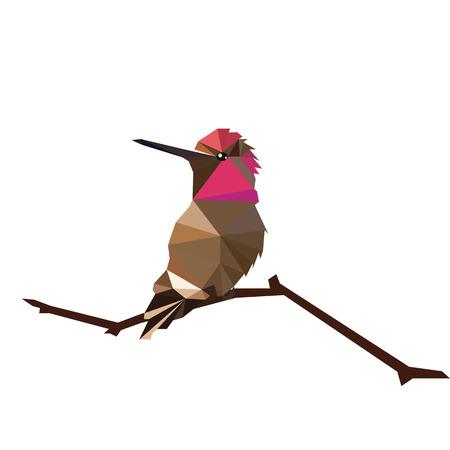 birds on branch: low poly bird design paint