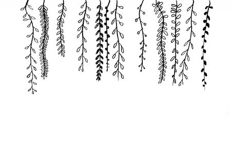 doodle plant hand drawn illustration,art design,wall inspiration