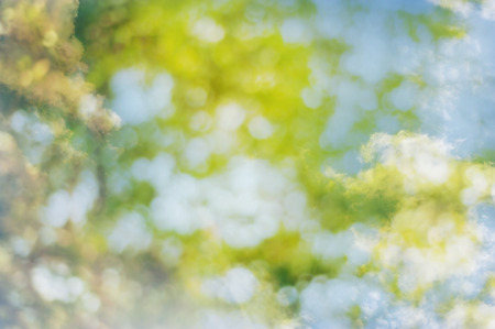 Spring sweet color light bokeh and white cloud blur for background