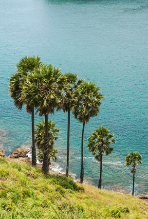 crystals in water: Trees in the blue sea, Phuket view point thailand Stock Photo