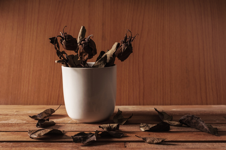 emty: Leaf of rose fall on wooden table, Warm tone and dark tone Stock Photo