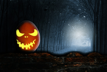 dreadful: Ghost in the darkness egg, Over dark tone Stock Photo