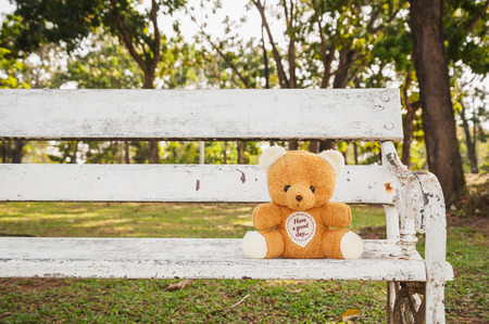 cute teddy bear: Teddy on chair relax on garden in evening light
