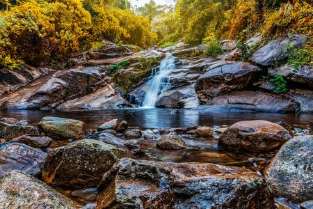 Water fall in forest with green tree landscape nature background Imagens