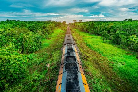 Train on railway transportation in forest and color of sunset, Transportation concept