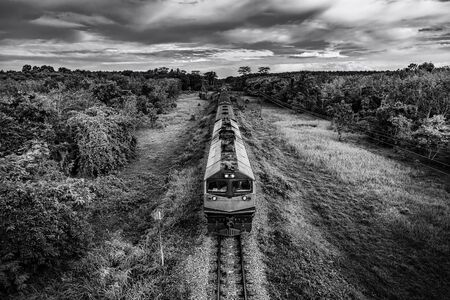 Train on railway transportation in forest and cloud storm, Transportation concept, Black and white and monochrome style Stock fotó