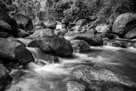 River stone and waterfall, View water river tree, Stone river in multi color tree leaf in forest, Black and white and monochrome style