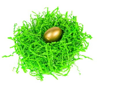 nested: golden egg nested in green decorative grass isolated on white Stock Photo