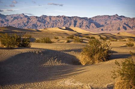 Desert Sand Dunes in Death Valley National Park Stock Photo