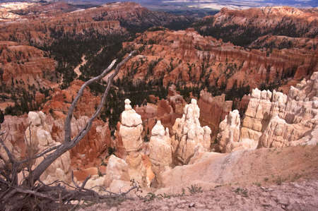Bryce Canyon Hoodoos Stock Photo