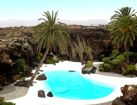 Oasis with palm trees in the Canary Islands
