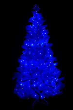 Christmas tree totally illuminated by blue lights on a black background