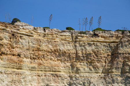 Cliffs at the Algarve coast