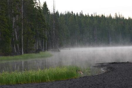 Misty lake  Banco de Imagens