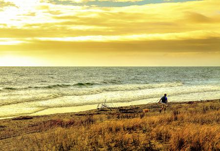 Sunset seascape seaside beach with man walking dogs