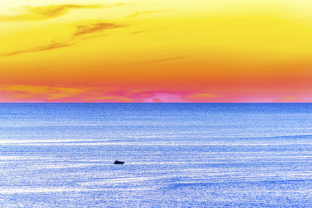 speed boat: Large sea panorama with speed boat sunset