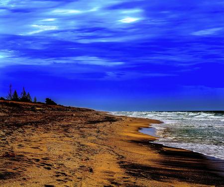 oceanscape: Pristine Kiwi black sand beach