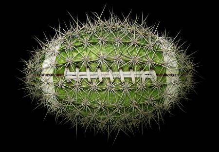 Digital illustration of a football-shaped cactus. Stock Illustration - 17095887