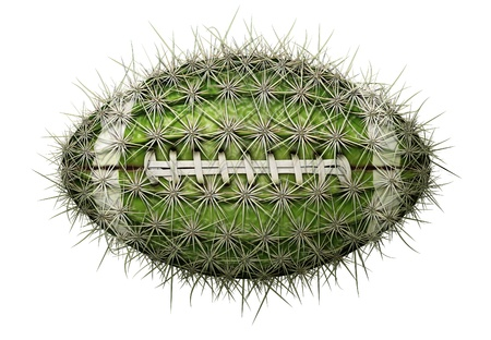 Digital illustration of a football-shaped cactus.