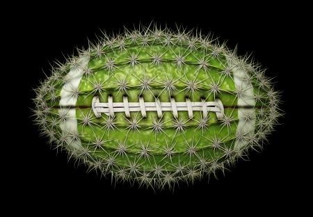 Digital illustration of a football-shaped cactus. Stock Illustration - 17095877