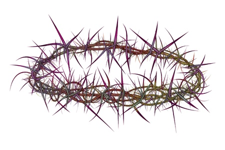 redemption: Illustration of a crown of thorns like the one placed on Jesus Christ