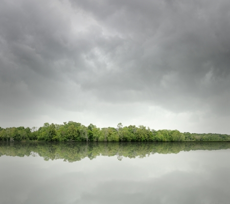Photo Illustration of a rivers edge landscape.