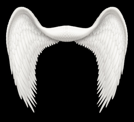 angel white: Digital illustration of angel wings, ready to be composited with other images.