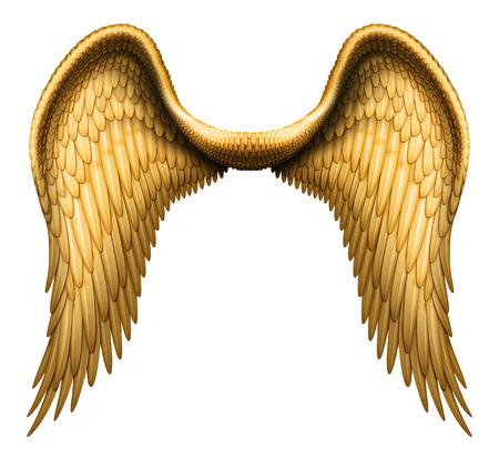 angel de la guarda: Ilustración digital de alas de ángel. Aislado en blanco y con un camino de recortes, que están listos para ser compuesta con otras imágenes.