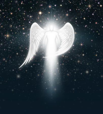星がいっぱい夜空に天使のデジタル イラストです。