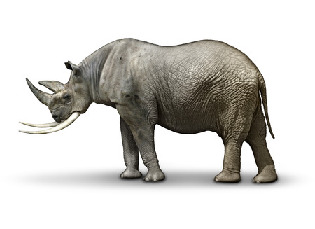 Republican In Name Only, represented by a half rhinoceros, half Elephant. Stock Photo