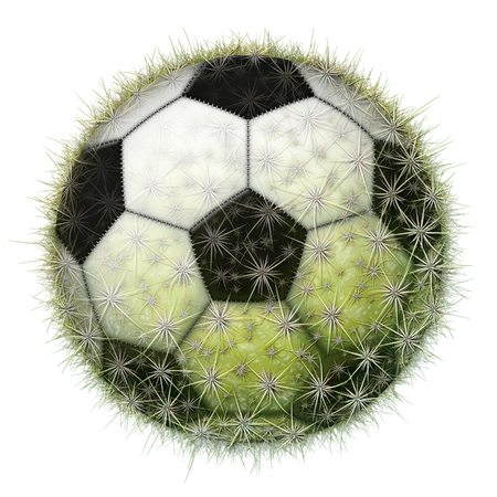 Digital illustration of a soccer ball with a cactus texture.