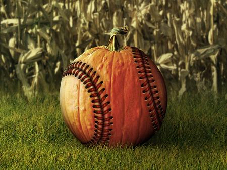 バック グラウンドでトウモロコシ畑と野球と補正後のかぼちゃの写真・ イラスト。